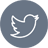 Twitter